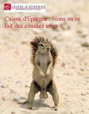 Caisse dépargne - écureuil caisse dépargne